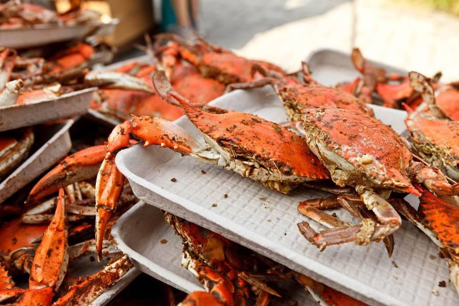 The World's Largest Crab Feast Held in Annapolis